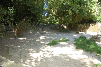 Zoo Duisburg 2012 683