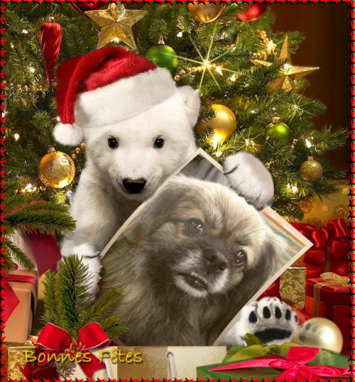 Vos Cadeaux Nouvel An