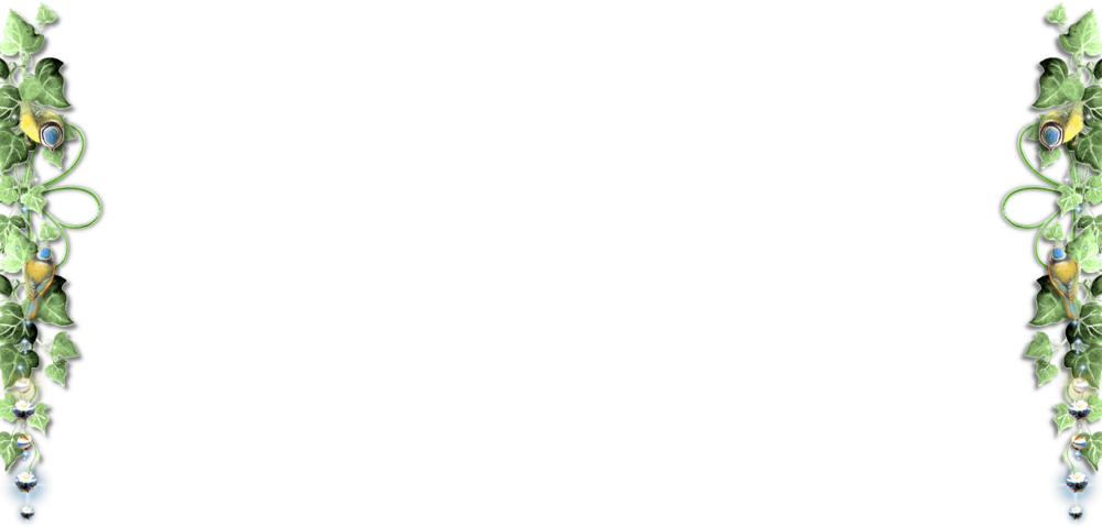 Bordure lierre/mésanges