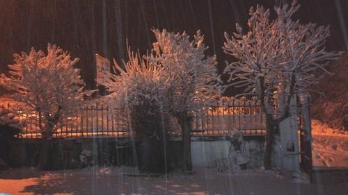 La neige du 3 février 2015