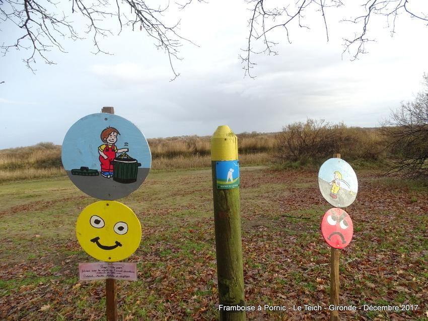 LE TEICH en Gironde - décembre 2017