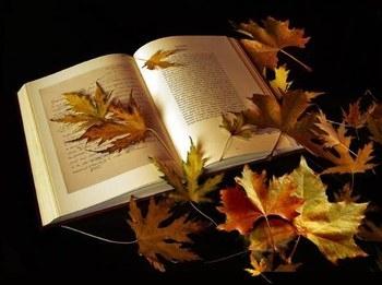 429665_138921081_livre-automne_H230453_L