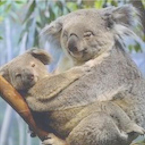 Koalastothemax.com #1