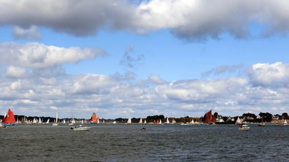 La fête du Golfe en voilier -