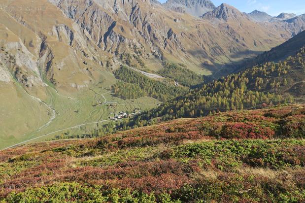 Val Ferret (2)