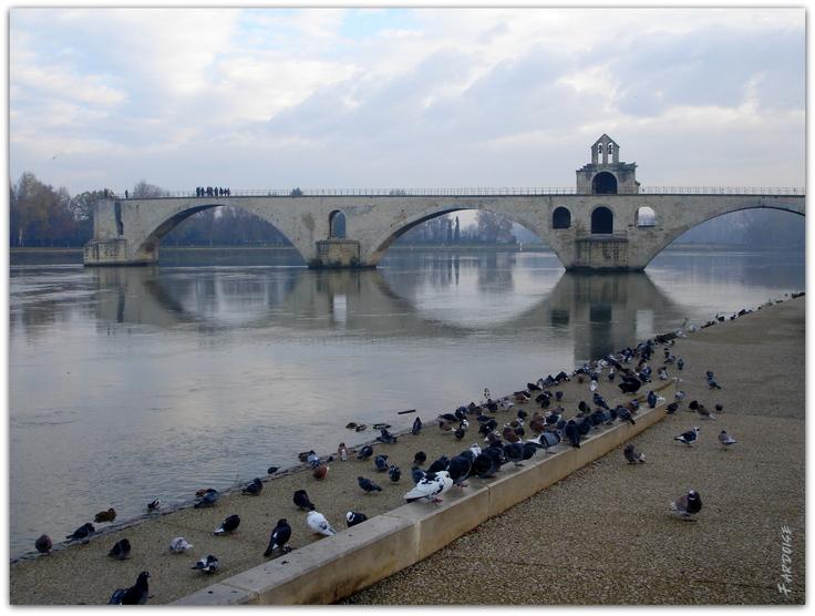 Sur le pont d'Avignon... et devant aussi