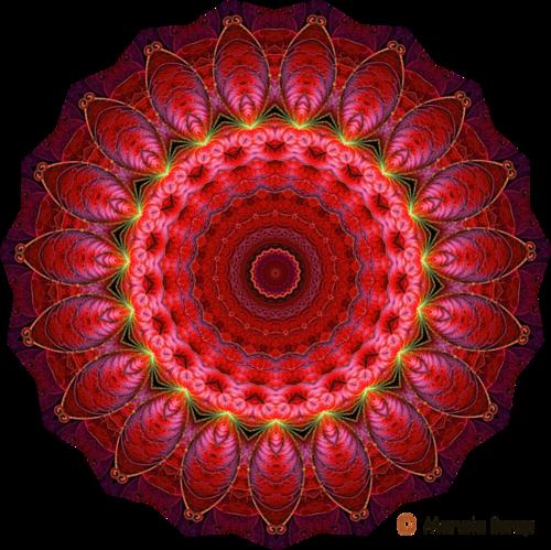 Mandalas pour décorations 6