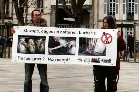 Stop Gavage Vannes