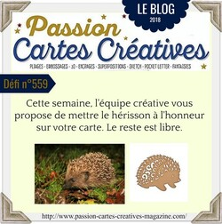 Passion cartes Créatives #559 !
