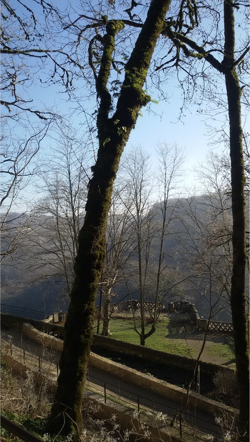 Brouillard et givre sur Rocamadour