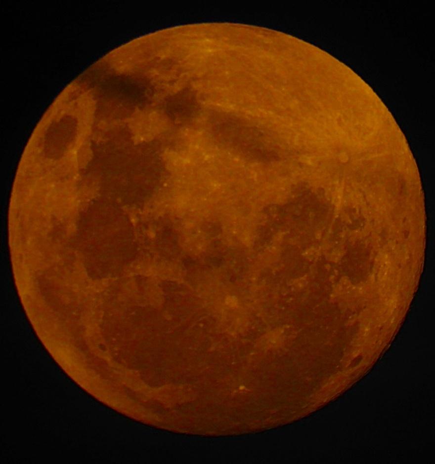 7/3/19 : Pleine lune, lune et divers animaux chez moi...