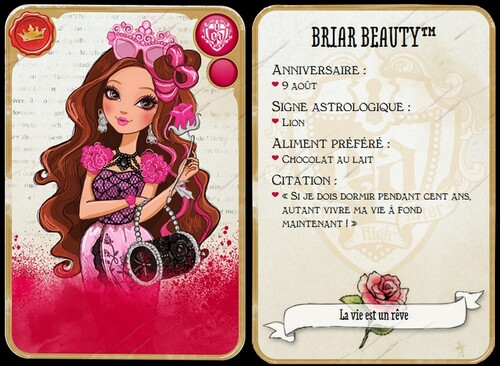 Personnages Ever After High Univers
