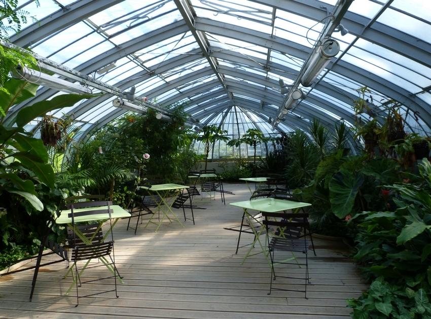 Au jardin des plantes..... suite