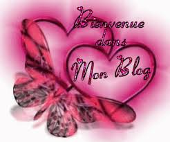 """Echange """"Carte de voeux"""" chez Manou60"""