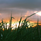 Depuis le site de la Batterie (Trinité) - Photo : Edgar