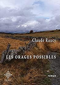 Les orages possibles par Raucy