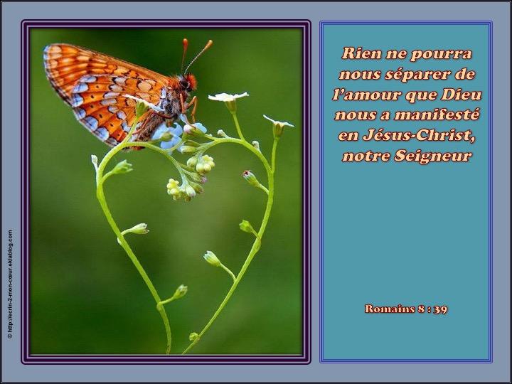 Rien nous sépare de l'amour de Dieu - Romains 8 : 39