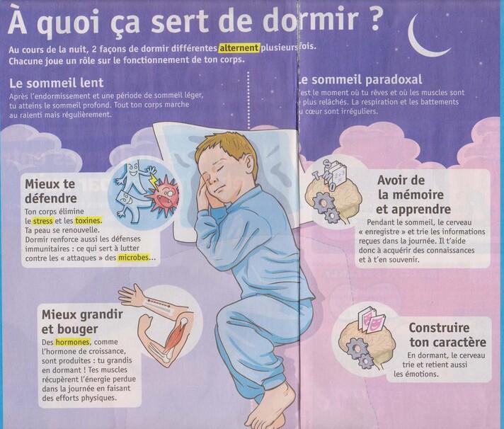 A quoi ça sert de dormir ?