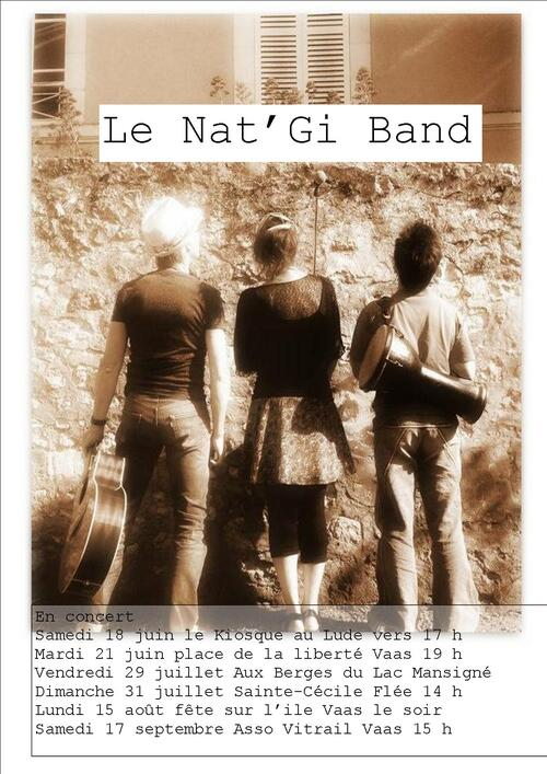Le Nat'Gi Band en concert
