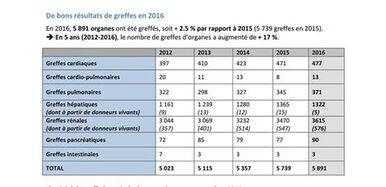 bilan des greffes 2016