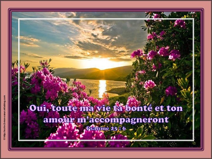Ta bonté et ton amour m'accompagneront - Psaumes 23 : 6