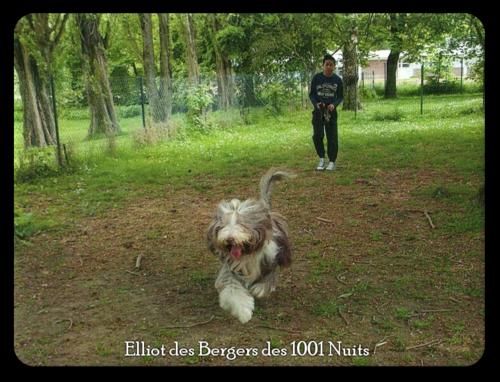♥ Elliot fils d' Athos & Angie ♥