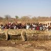 Crocodile de 6,70m et 1130 kg