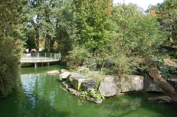 dierenpark emmen d50 031