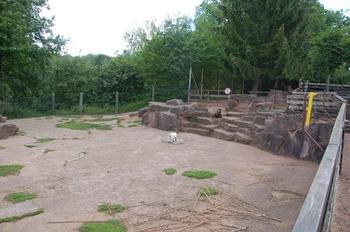 Zoo Saarbrücken 2012 107