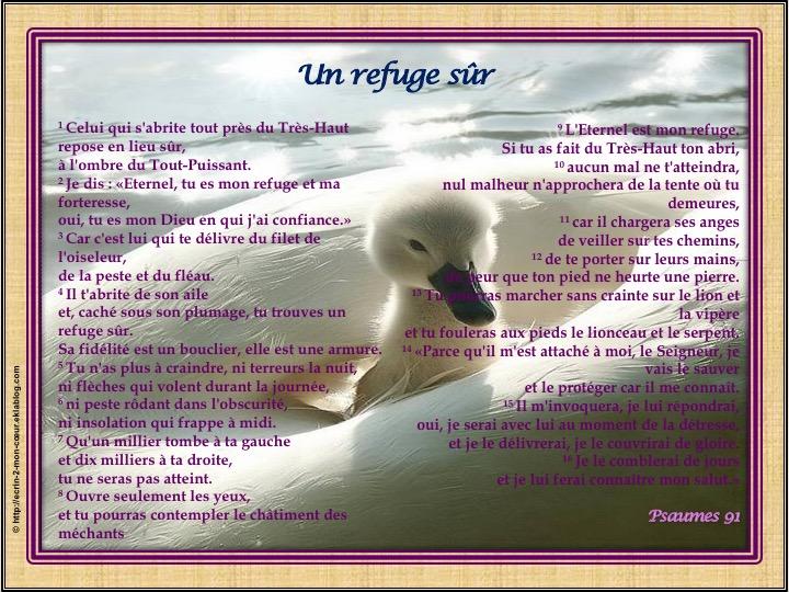 Un refuge sûr - Psaumes 91