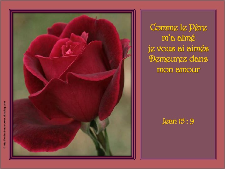 Demeurez dans mon amour - Jean 15 : 9