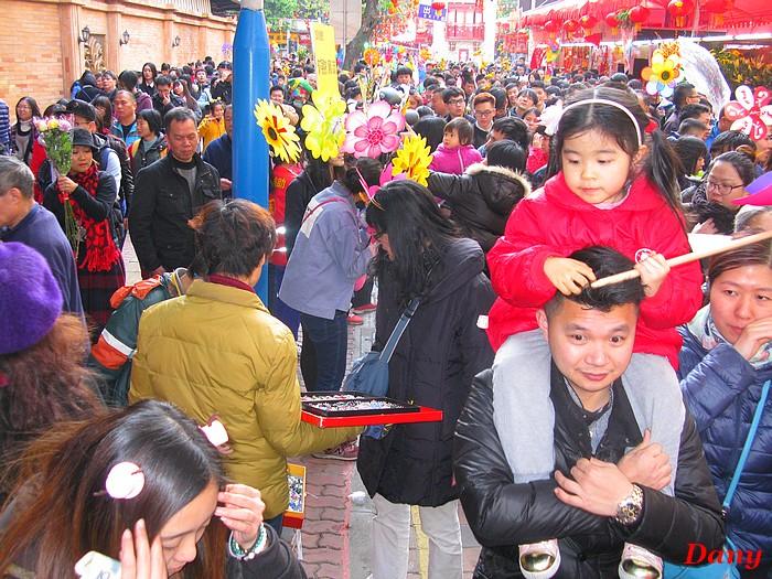 Chine 2015-marché aux fleurs Beijing Lu-4