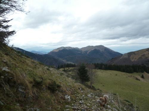 Col de Piéjau (Le Couéou) - 31