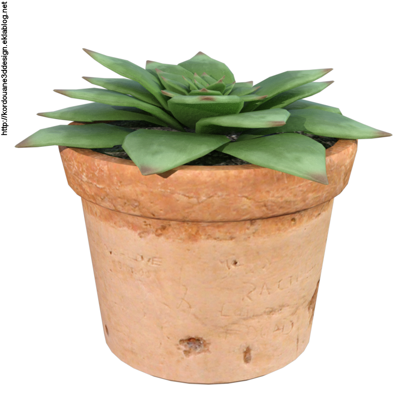 Tube de plante grasse en pot (render)