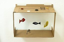 un aquarium en classe