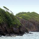 La côté escarpée de la Pointe de l'Anse l'Etang - Photo : Edgar