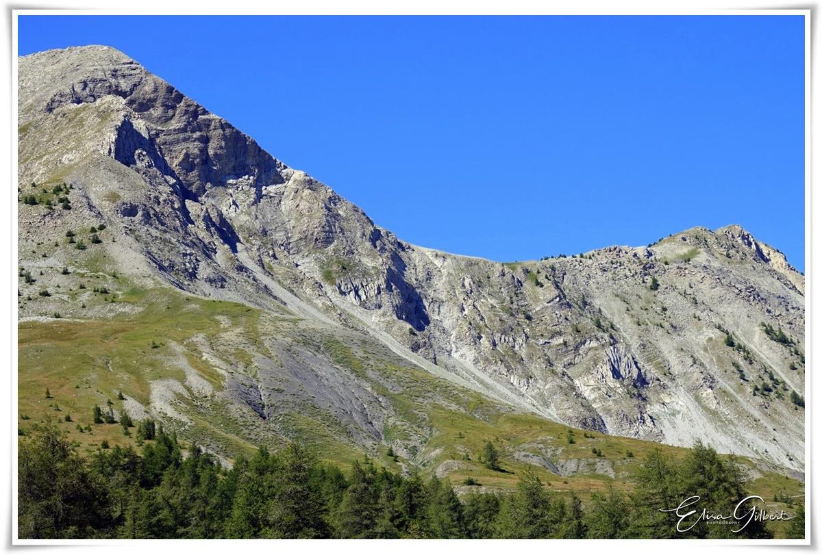 Plein été en montagne