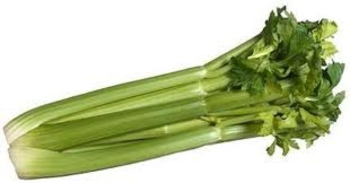 branche de celeri