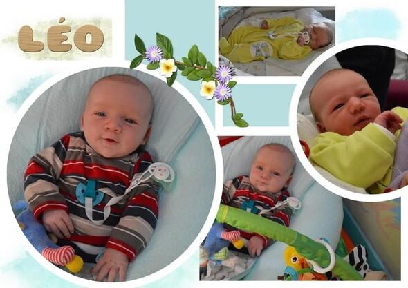 Blog de sylviebernard-art-bouteville : sylviebernard-art-bouteville, Un petit coucou de Léo, mon petit-fils né le 28 décembre 2013.