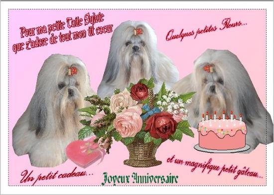 Joyeux anniversaire maman d 39 amour chang la sagesse - Carte bon anniversaire maman ...