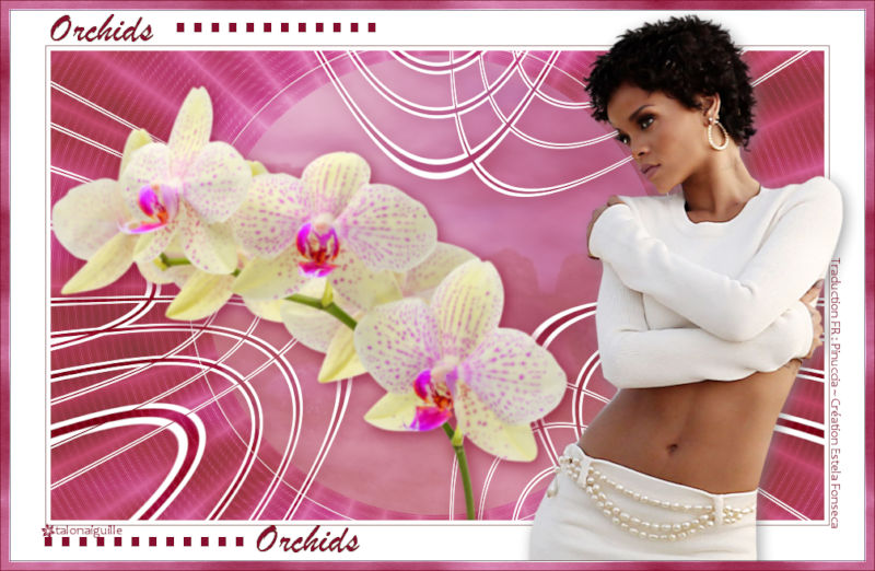*** Orchids ***
