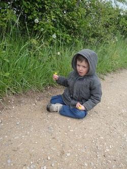 Louis aime les marguerites