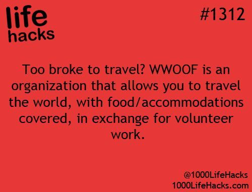 WWOOF: Volunteer work on organic and/or self sustaining farms in trade for meals, room board. I knew this!!: