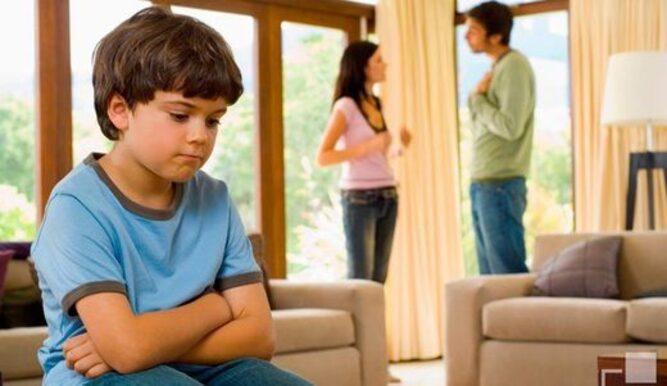 Famille narcissique