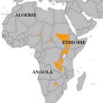 Bec-en-Sabot du Nil