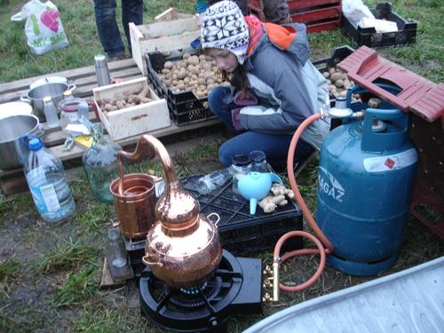 26 février '14 - Champ des Cailles le 24 novembre '13 - fabrication d'hydrolat sur le champ