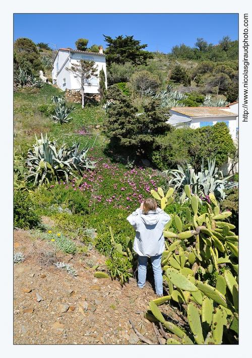 Cap Béar, un regard sur la méditerranée