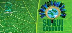 Message d'un chef indien Surui pour sauver la planète