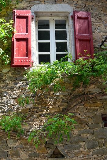 2014.05.08 La Bambouseraie, commune de Anduze région Langudoc-Roussillon (Département du Gard)