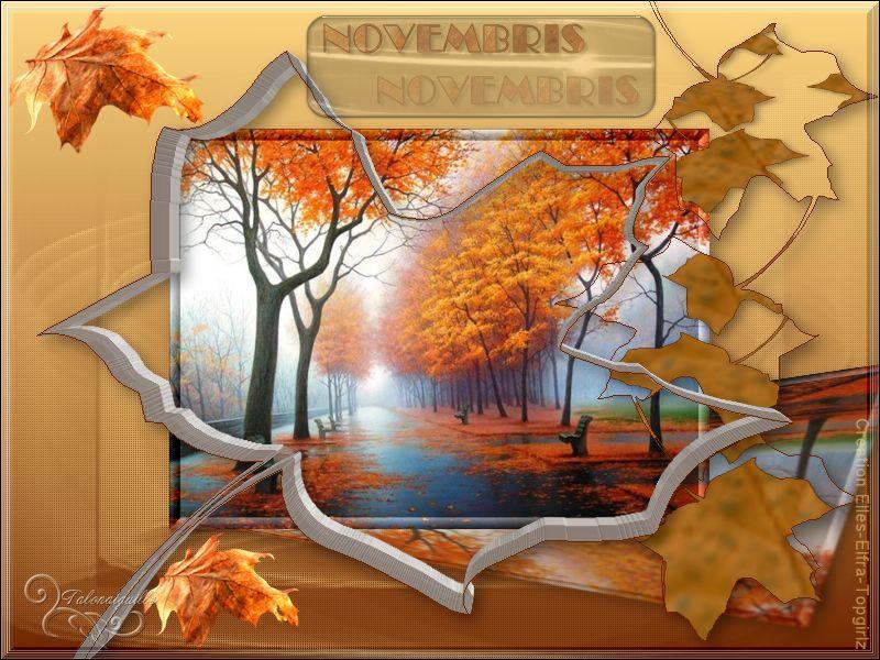 *** Novembris -- Elles-Elfra Design -Topgirlz-Reloaded ***